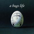 Das Leben eines Käfers - Ei Ei Ei